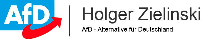 holger-zielinski.de Logo